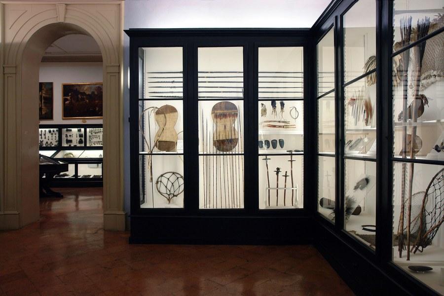Sala dell'Etnologia del Museo Civico di Modena.jpg