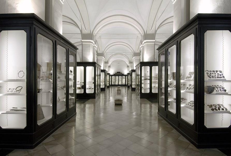 Salone Archeologia del Museo Civico di Modena.jpg